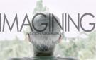 Intuition Equalibrum Imagining