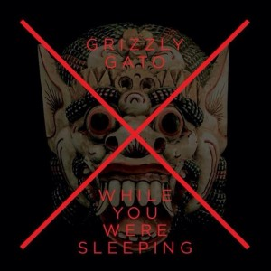 Grizzly Gato - While You Were Sleeping